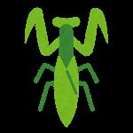 bug_mark11_kamakiri